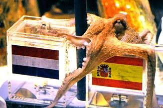 El pulpo Paul también es campeón: España obtuvo la Copa del Mundo en Sudáfrica 2010