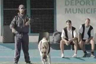(VIDEO) Se burlan de él: Mira el divertido Spot del hermano de Diego Maradona