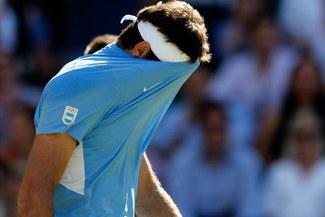Juan Martín Del Potro será baja ante Alemania por Copa Davis