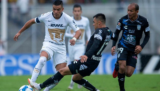 Pumas vs Pachuca LIVE ONLINE via Televisa and TDN: on date 4 of Liga MX