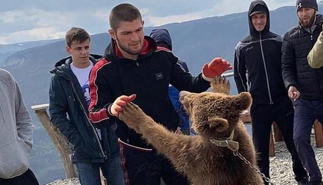Khabib Nurmagomedov genera polémica al difundir un video donde pelea y maltrata a un oso [VIDEO]