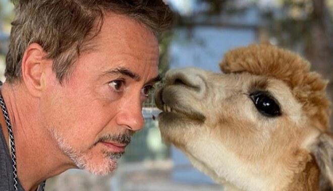 Robert Downey Jr. participará en la nueva producción abordará el vínculo entre los animales y los humanos. Foto: Instagram