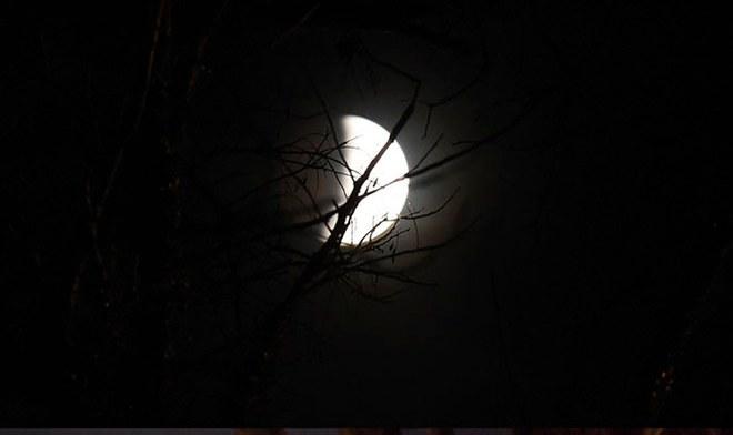 Eclipse Luna 2019 desde Paraguay