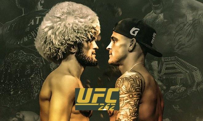 FOX Action EN VIVO UFC 242 ONLINE Khabib vs Poirier FOX Sports Main Card UFC EN VIVO Ver Pelea GRATIS Fight Night Cartelera Hora México Live Sports Stream Canal TV YouTube VIDEO