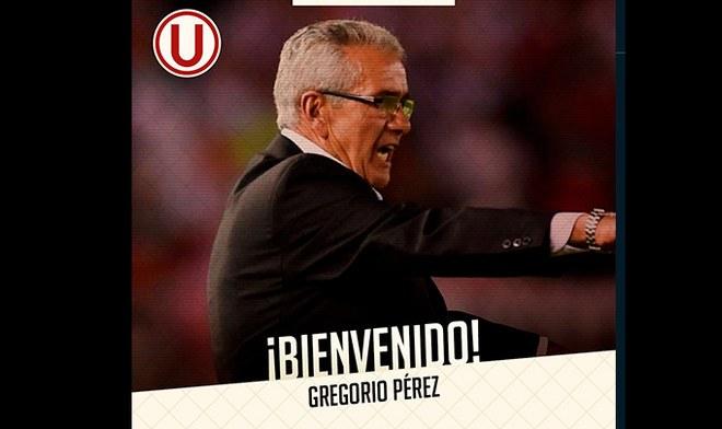 Gregorio Pérez, Universitario