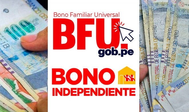 bfu bono independiente