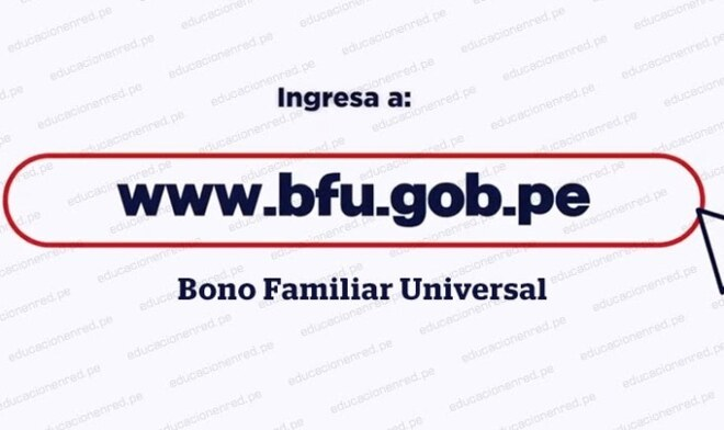 Bono Universal, BFU