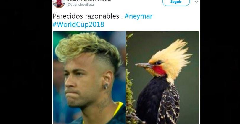 brasil vs suiza en vivo neymar y los divertidos memes que